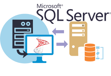 SQL Database Management Services